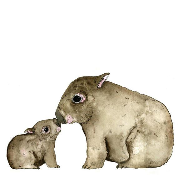 Illustration  Pen and Watercolour  Wombat Nose to Nose