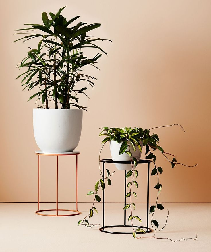 Larger pots and drip trays can sit flat on the wide surface area whilst smaller pots can sit within the triangular support. | huntingforgeorge.com
