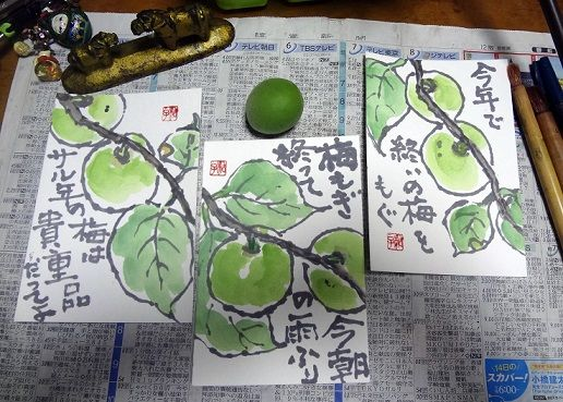 イメージ0 - 梅の実をかきかきの画像 - 絵手紙と。チャメとの日々 - Yahoo!ブログ