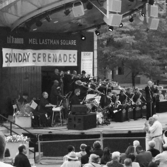 Sunday concerts at Mel Lastman Square.