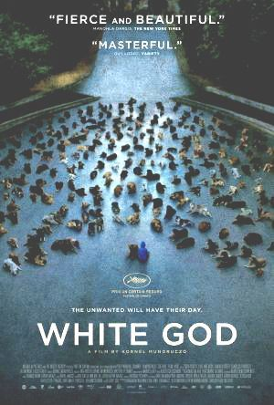 Guarda il now before deleted.!! Streaming Streaming White God gratuit CINE online Cinemas Download White God Online Subtitle English Download White God Online RapidMovie UltraHD 4k Where Can I Bekijk White God Online #FlixMedia #FREE #Moviez Gold Film Online Play Unlimited This is Premium