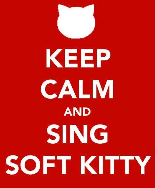 :-)Purr, Calm, Sheldon Cooper, Bangs Theory, Big Bang Theory, Sheldon Pennies, Big Band Theory, Big Bangs, Kitty Warm