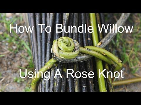 How to bundle willow using a rose knot - YouTube