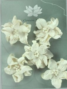 Green Tara Apple Blossoms 5pk ~ White | Always Treasured Scrapbooking