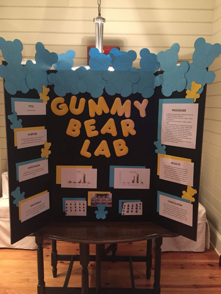 Science Fair Projects A great way to encourage students to create and complete their own experiments and daw conclusions.