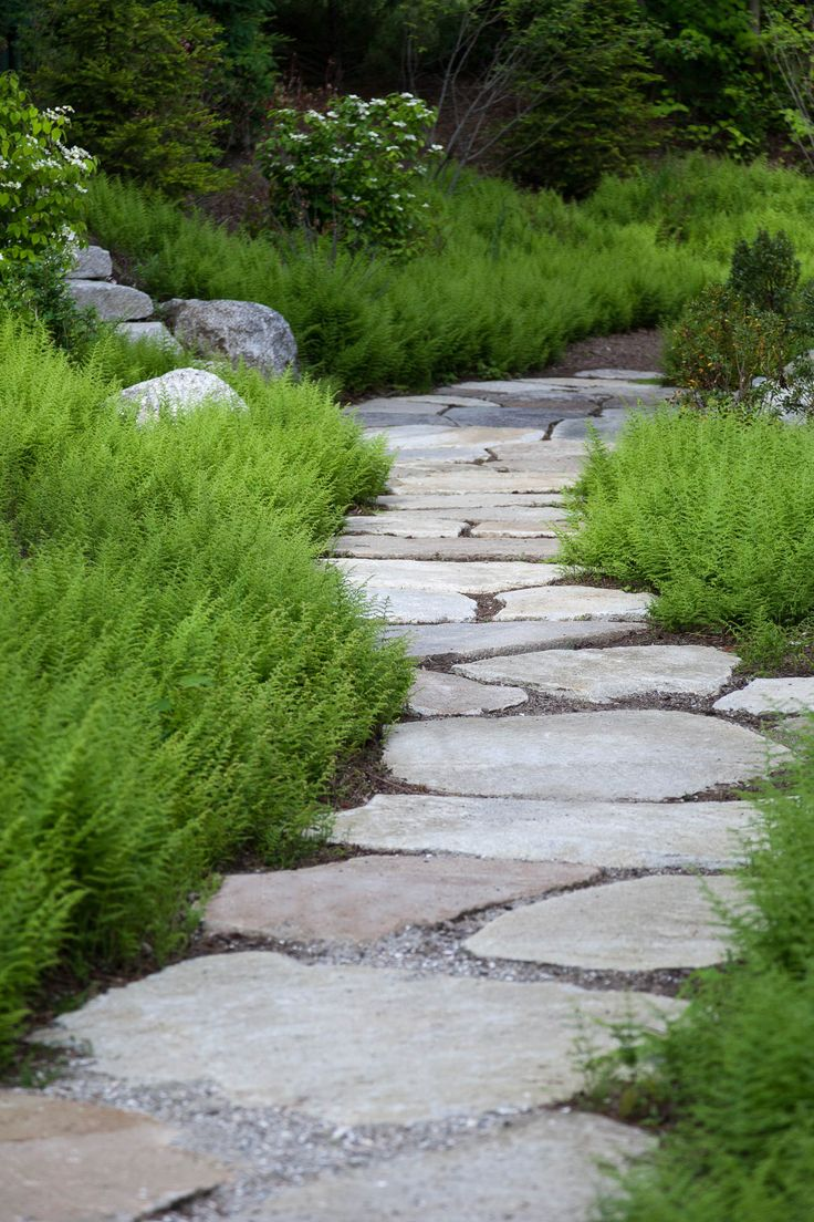 Landscape Architect Visit: Clamshell Alley on the Coast of Maine: Gardenista