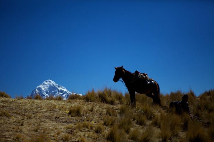 Peru, 4500m. above sea level, Inca quarry trail