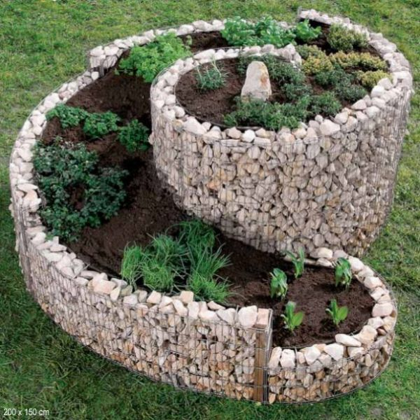 Les anglais, dont le climat humide ne favorise         pas la culture des plantes aromatiques, ont inventé un parterre         suré...