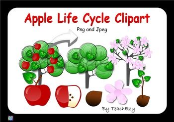 Apple Lifecycle Clipart is a useful tool when teaching children about lifecycles.   We have included - PNG (transparent backgrounds) and JPEG (non-transparent backgrounds).