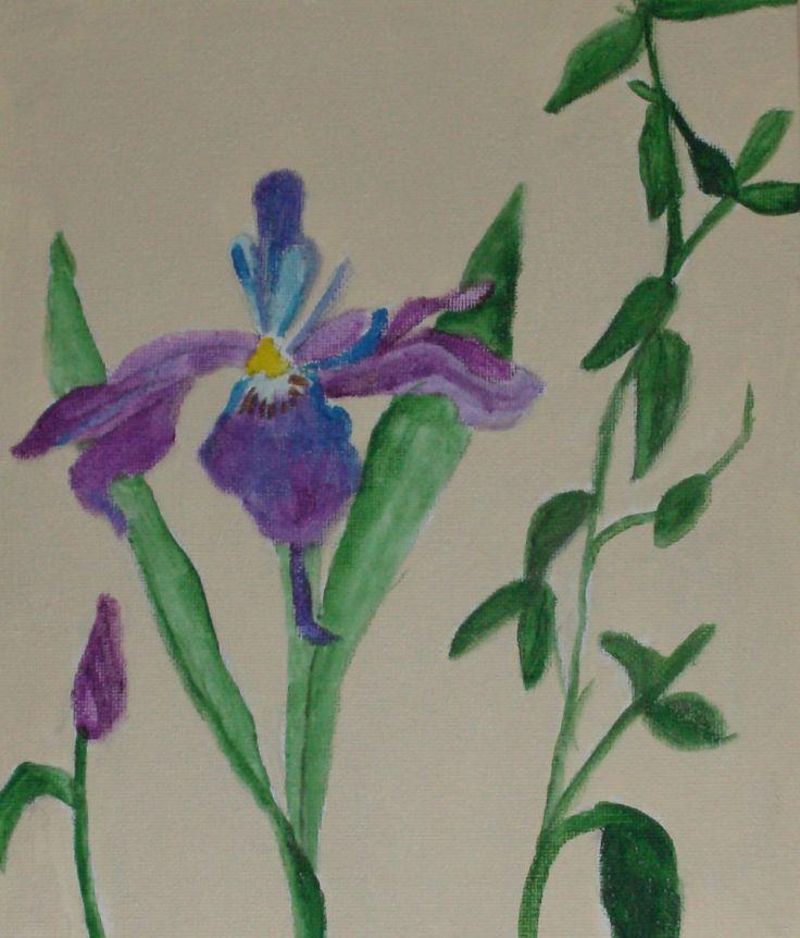 wild iris,visit galleryRG.myshopify.shopify