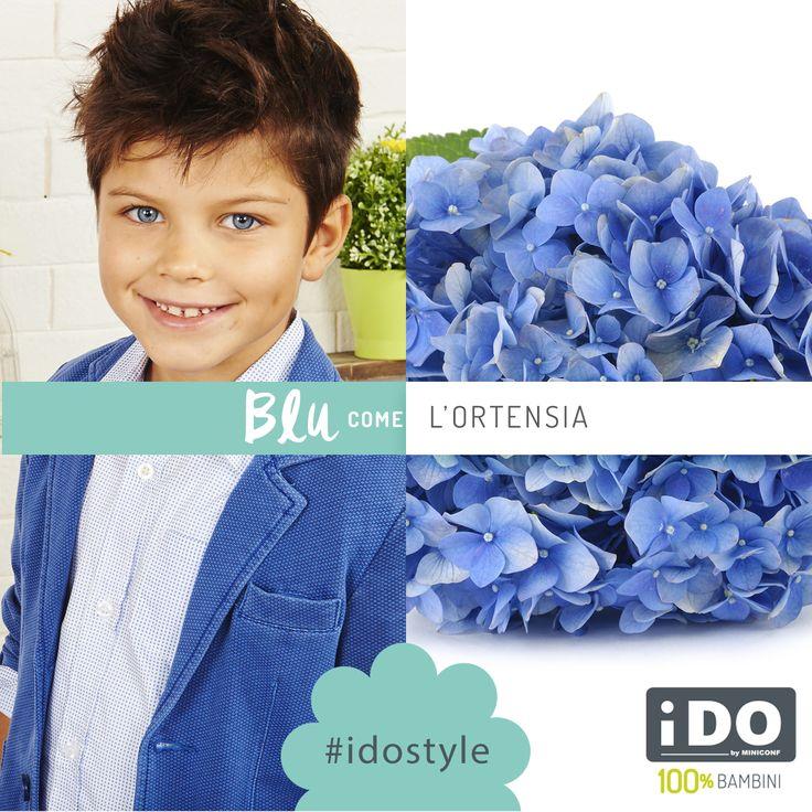 Il Blu è il colore dell'Ortensia #SpringSummer #idokidswear #fashionkids #kidsfashion #PE16 #boy #colour #colours #blue