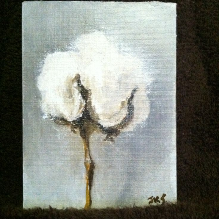 small painting of cotton I did