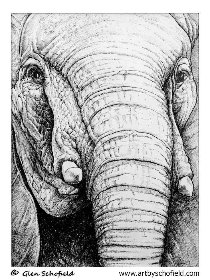 #013 Elephant - 18 X 24 <---- www.artbyschofield.com #animal #art #artoftheday #creative #drawing #elephant #fineart #glenschofield #icon #iconic #icons #illustra #illustration #ink #myart #onlineart #onlineartgallery #onlineartsales #paint #painting #paintings #penandink #pens #picture #portraits #portraiture