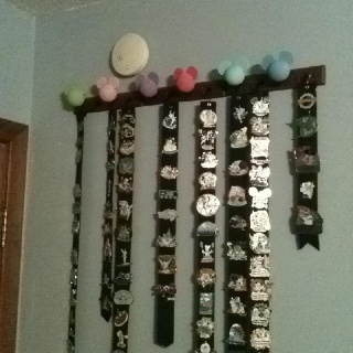 My method of displaying my Disney pins. Each length of ribbon holds the pins from one trip.