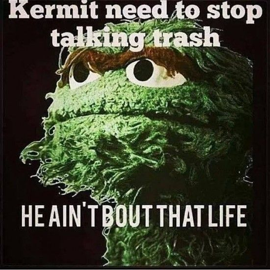 15 Even Funnier Kermit The Frog Memes Part 2 - NoWayGirl