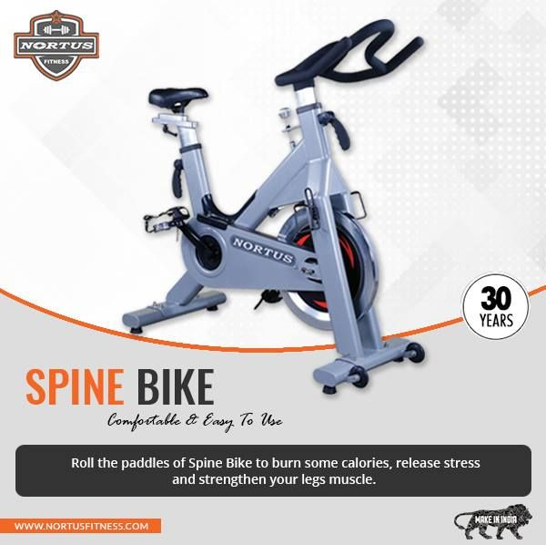 Have You Ever Thought Why The Exercise Spinning Bikes In India By