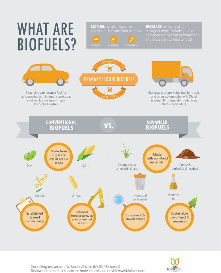 24 best images about biomass biomasse on pinterest portal stove and entrepreneur. Black Bedroom Furniture Sets. Home Design Ideas