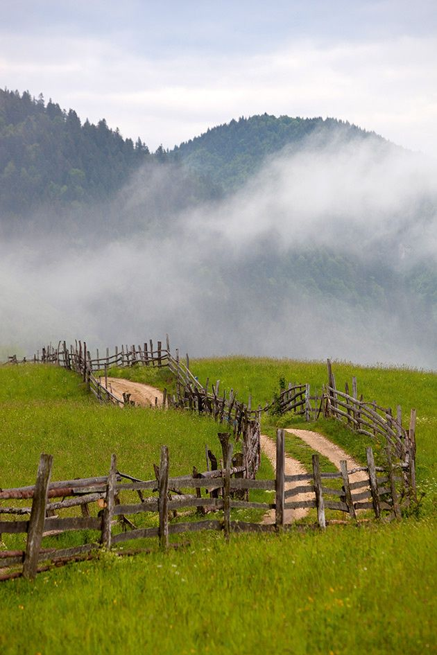 Valle en transilvania rumania. Cerca del pueblo de Bran. www.romaniasfriends.com