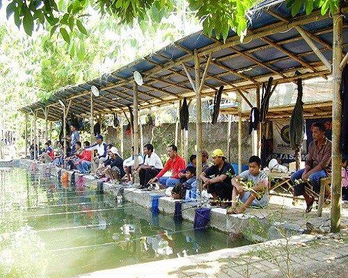 Cara Membuka Usaha Kolam Pemancingan Ikan beserta Uraian Modal dan Untungnya