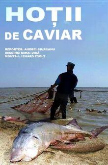 ho-ii-de-caviar-be88262.jpg (220×334)