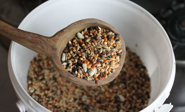 Recettes de boules de graisse pour les petits oiseaux: avec des graines et de la margarine, on fabrique de belles boules de graisse pour nourrir les oiseaux