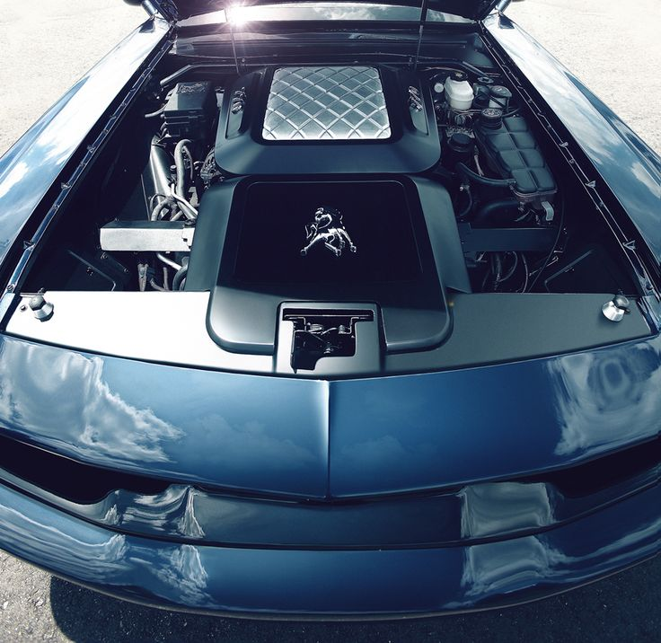 Best New Muscle Cars Images On Pinterest Bass Muscle Cars