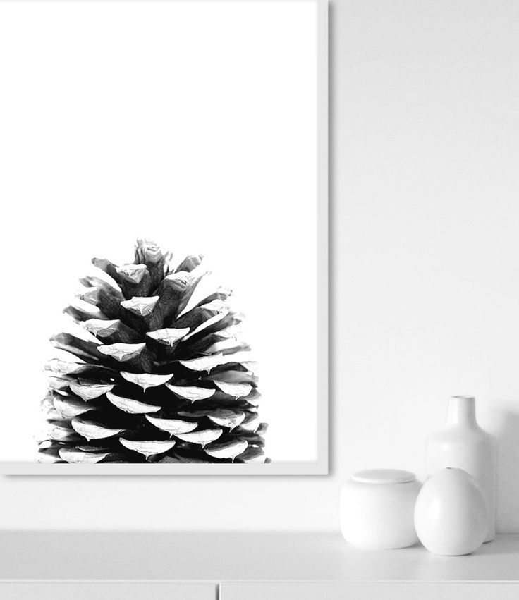 Scandinavian Print | Black and White Print | Pine Cone Photography | Scandinavian Decor | Pine Cone Art | Scandinavian Interior | Pine Cone Print by Little Ink Empire