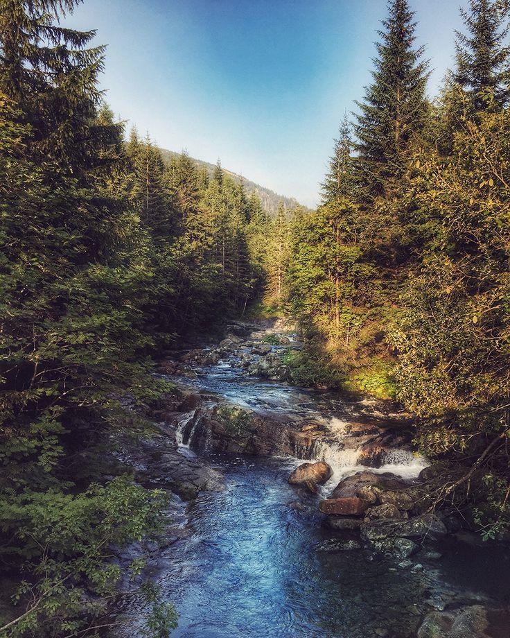 Beautiful river streams in Krkonoše @travelwithmaya