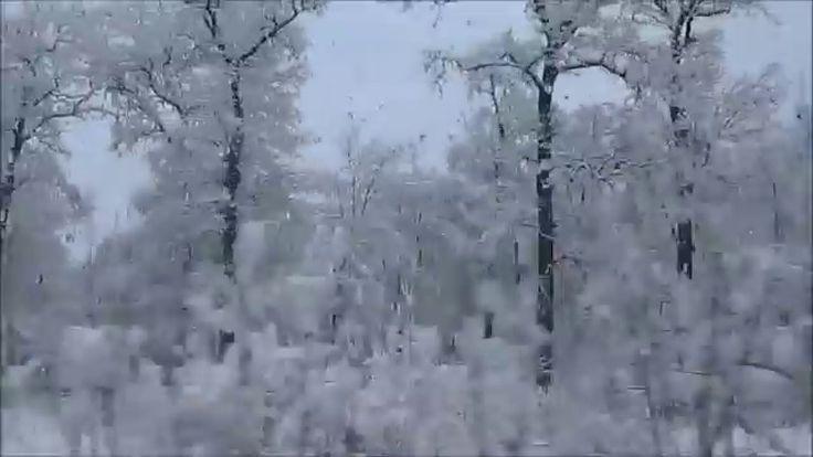 BEAUTIFUL WINTER through the train window