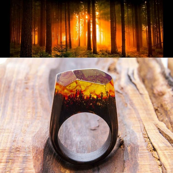 Amber dawn in the forest  #greenwood #greenwoodring #WoodenBands #wood #woodring #ring #resinring #forest