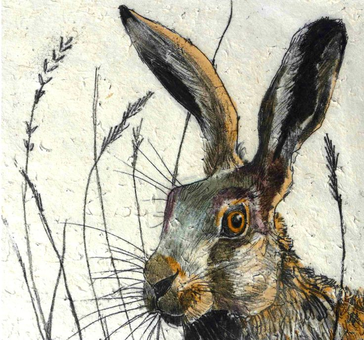 Hare  by Annabel Langrish