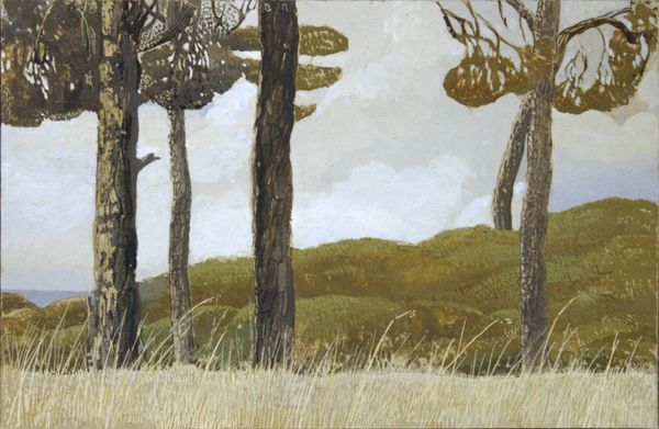Pine Tree Landscape
