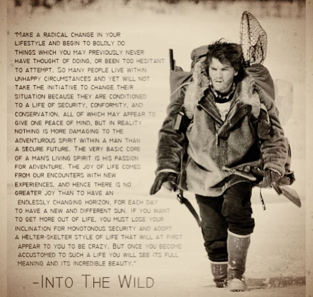 into the wild movie song