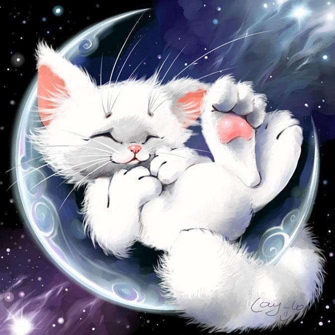 Днем, открытки спокойной ночи смешные зимние котики