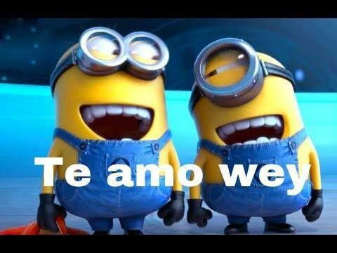 Te amo wey | Misc LOVE <3 | Pinterest | Te Amo