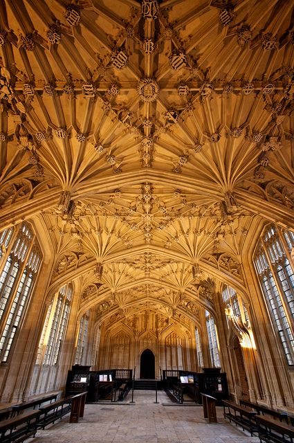 The fabulous vaulting of the Divinity School, part of the Bodleian Library in Oxford, England