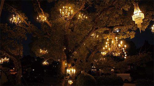 Chandelier tree - Adam Tenenbaum
