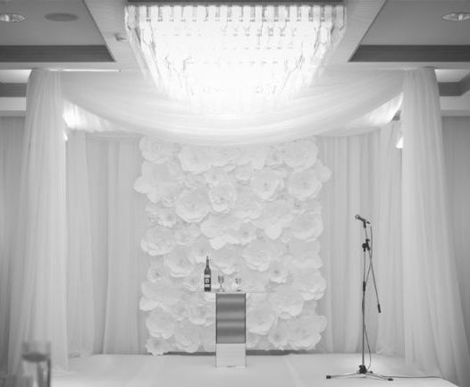Extra large Paper Flower Backdrop white by DragonflyExpression