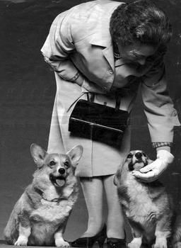 Can't have a 'corgi' board without at least 1 picture of the Queen with her darlings.