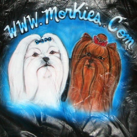 Benji Faze Rug Dog Breed: 15 Best Morkies :o) Images On Pinterest