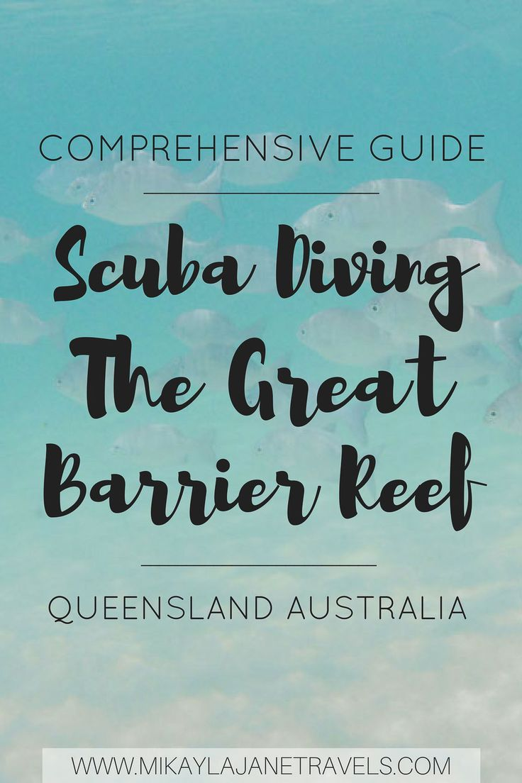 Comprehensive Guide to Scuba Diving in The Great Barrier Reef | Queensland, Australia | Travel Tips For Australia | Bucket List Destination | #scubadiving #greatbarrierreef #queensland #travelaustralia | www.mikaylajanetravels.com