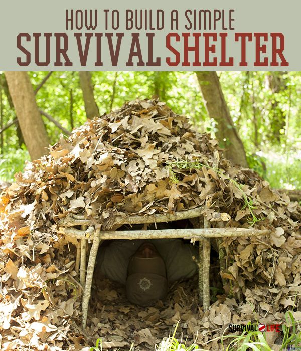 Emergency Shelter DIY | Basic Survival Skills