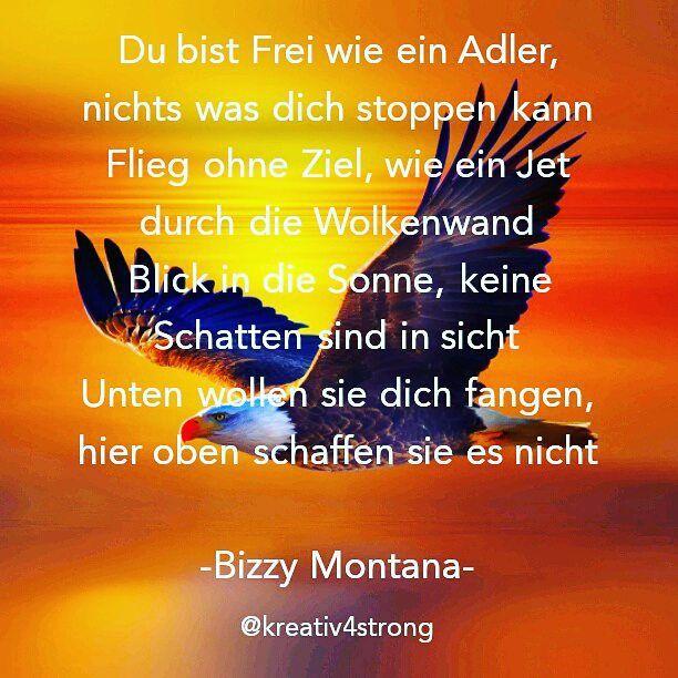 ... #rapmusic #germanrap #deutschrap #musik #raplines #rapzitate  #bizzymontana #fliegen #fly #flying #frei #vogel #überdenwolken #adler  #fangen #zeilen