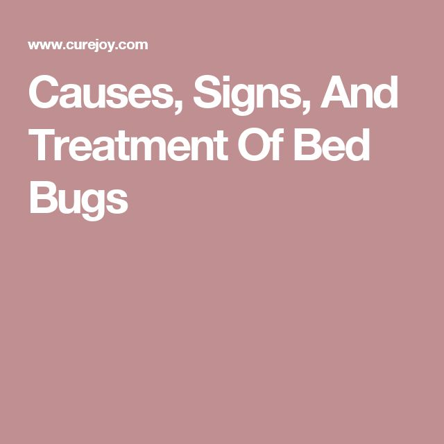 Causes, Signs, And Treatment Of Bed Bugs