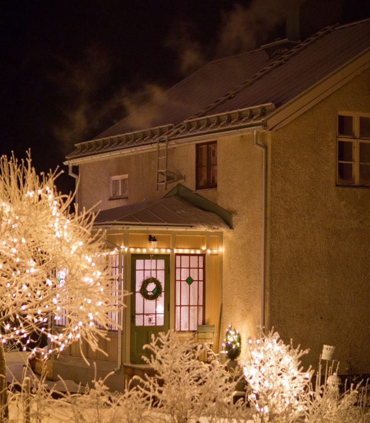 Christmas Lights winter time