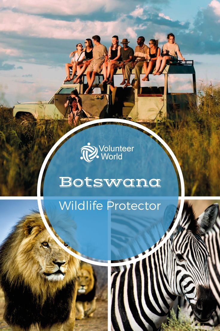 Experience Africa like never before as a Wildlife Protector!