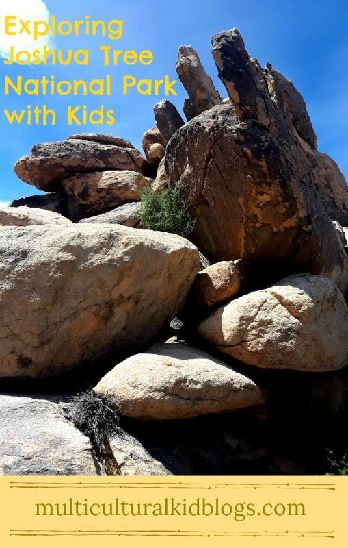 exploring joshua tree national park with kids family travel rh pinterest co uk