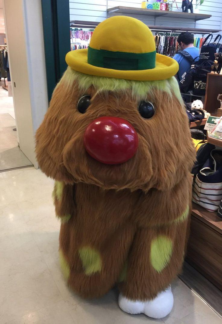 """ころすけさんのツイート: """"先ほどボンドを買いに新宿の東急ハンズに行ったら大好きなゴン太くんがいました。まさかゴン太くんに会える日が来るなんて・・!… """""""