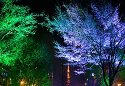 The Subconscious Effect of Coloured Lighting