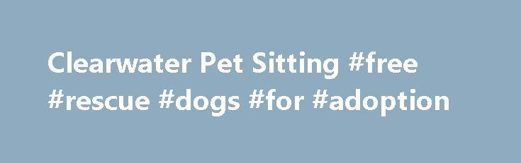 Clearwater Pet Sitting #free #rescue #dogs #for #adoption http://pet.remmont.com/clearwater-pet-sitting-free-rescue-dogs-for-adoption/  Whether you are going away for a day or an extended vacation, or if work keeps you away for long hours, THE BARKING CAT PET SITTING LLC is here to provide you with in-home pet sitting services. Our mission is to provide you and your pets with flawless attention during your time away from home. An in-home environment is the best situation for caring for your…
